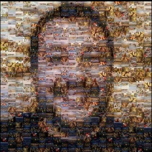 salvini-collage-1200x1200.jpg